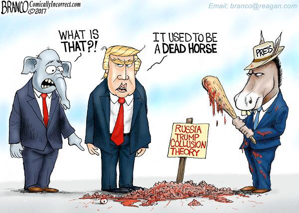 USED_TO_BE_A_DEAD_HORSE!